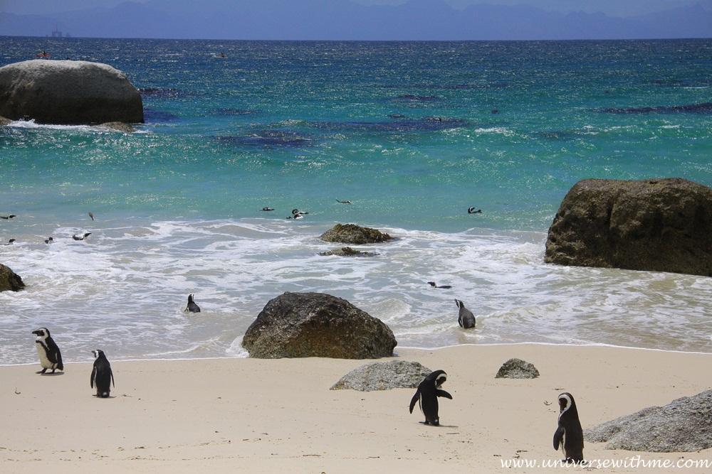Capetown039