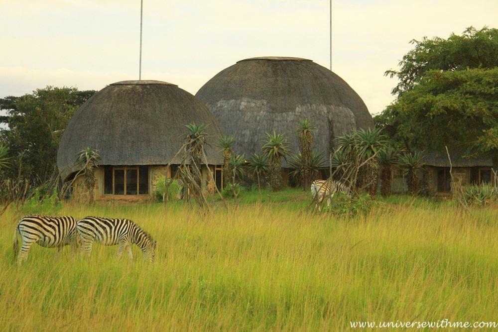 Swaziland032