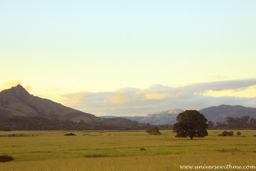Swaziland034
