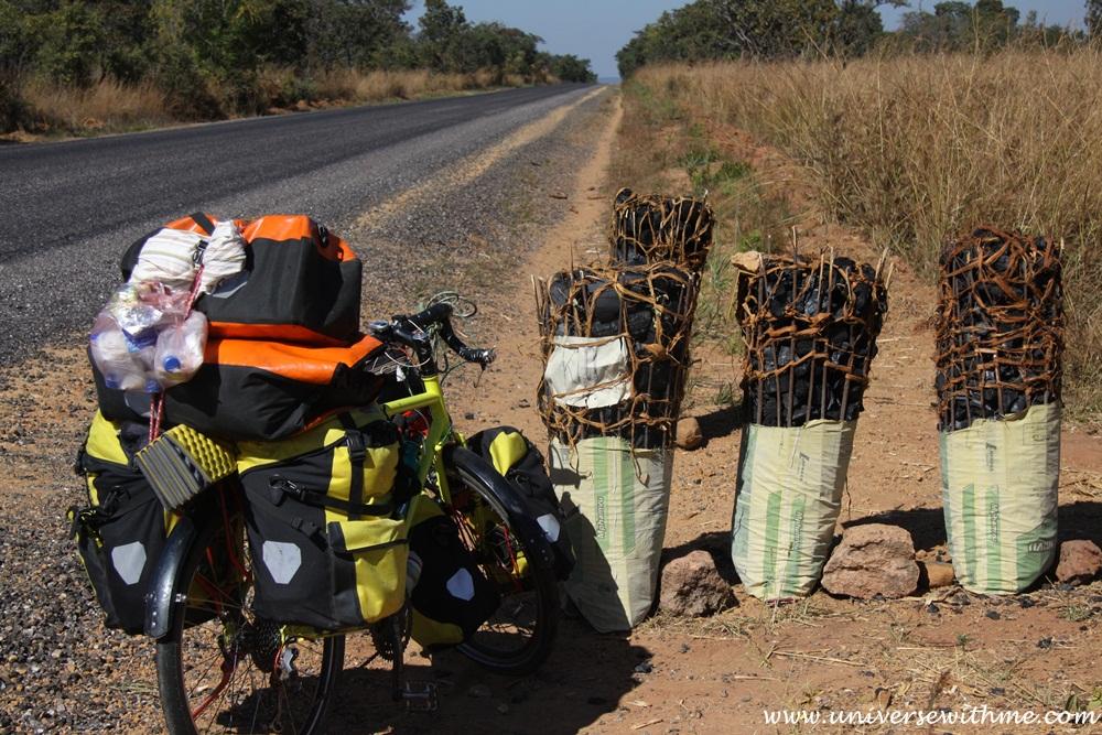 Zambia304