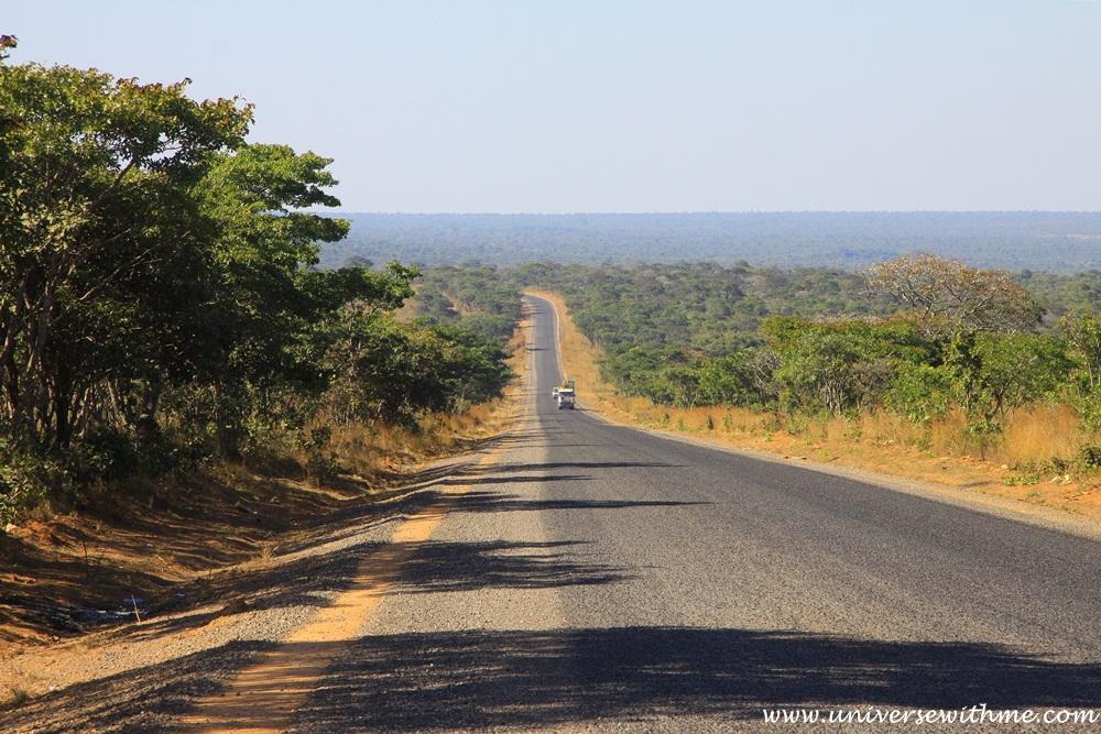 Zambia305