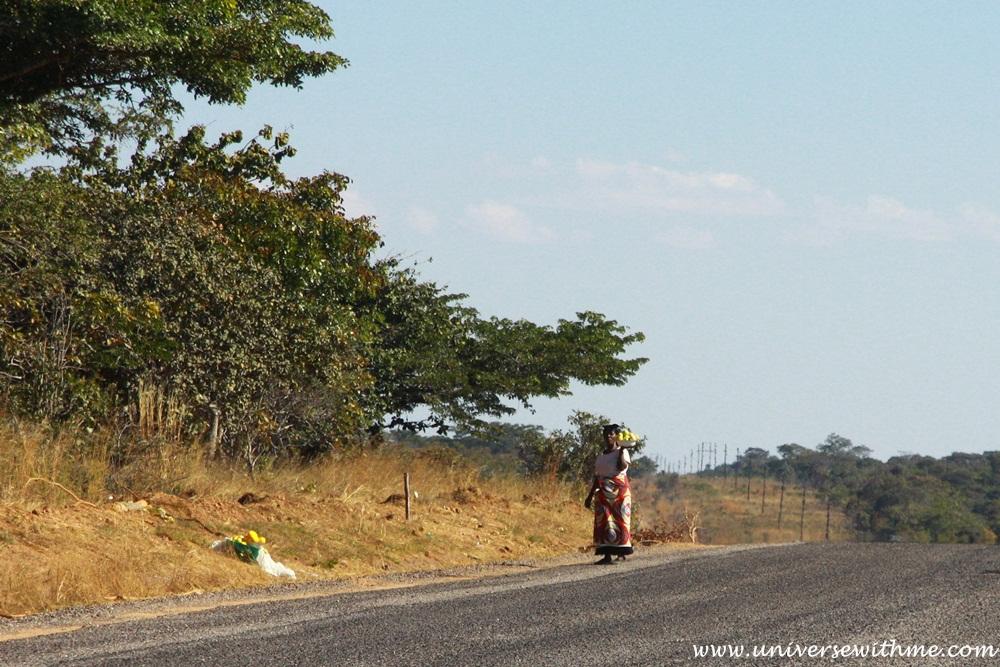 Zambia306