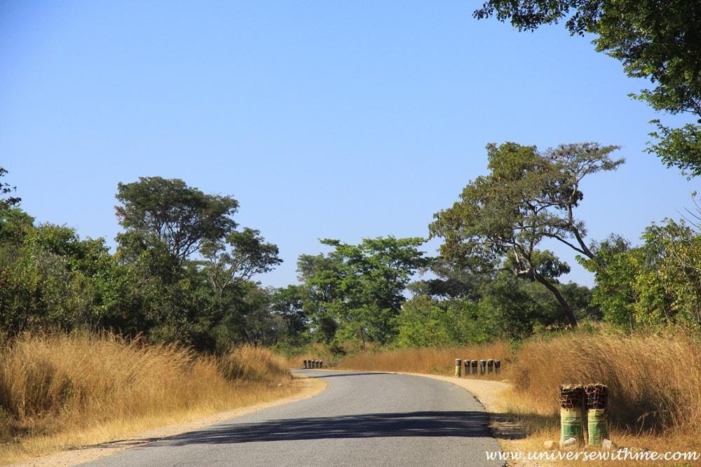 Zambia312