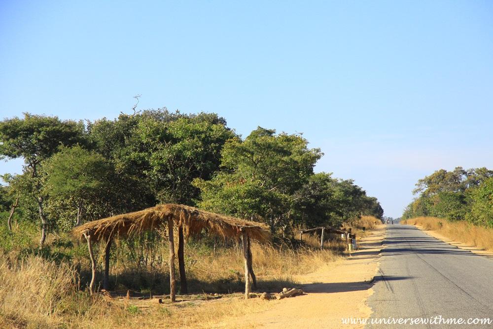 Zambia315