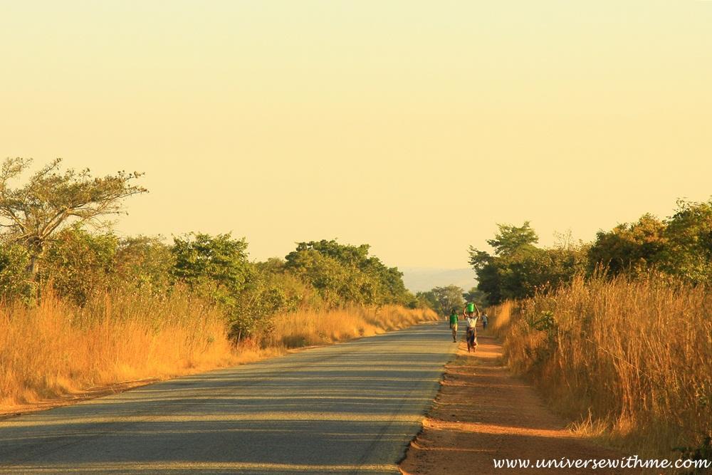 Zambia322